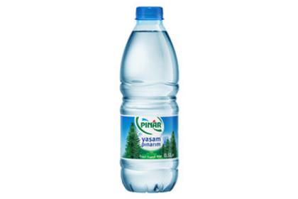 Wasser 0,5l